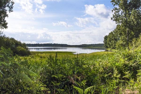 paysage marais d'orx camping landes