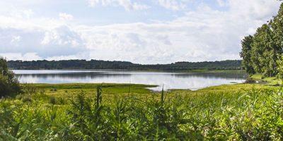 réserve naturelle marais orx camping landes