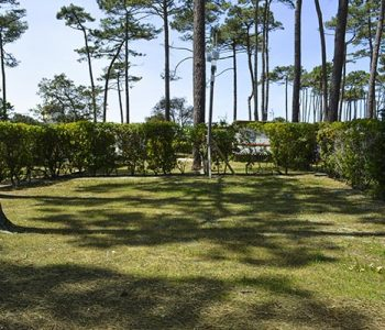 camping with rental of landes pitches